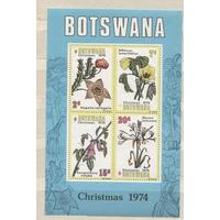Ботсвана. Флора. Цветы. Гибискус. Стапелия. Рождество. Mi/ 128-131, Блок 8. 1974 г **||9