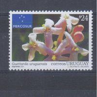 [1542] Уругвай 2001. Флора.Цветы.