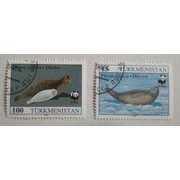 Туркменистан 1993. Тюлени
