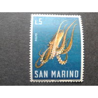 Сан-Марино 1966 осьминог