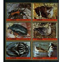 Аджман 1972г, жуки и птицы, 6м. сцепка