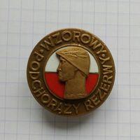 Польша. Отличный хорунжий резерва (бронза)