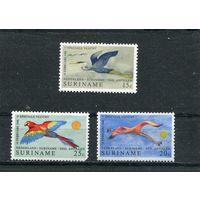 Суринам. Птица. Авиа.