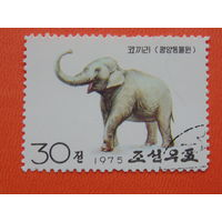 Корея 1975г. Фауна.