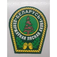 Шеврон государственная лесная охрана Беларусь*