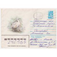 ХМК СССР прошедший почту Малая белая цапля
