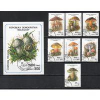 Грибы Мадагаскар 1990 год серия из 1 блока и 7 марок