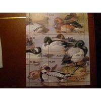 Фауна Птицы Утки Абхазия 2000 год 1 чистый малый лист**