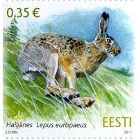 Эстония 2011 г.  Эстонская фауна. Заяц.