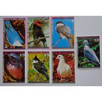 Экваториальная Гвинея.птицы.