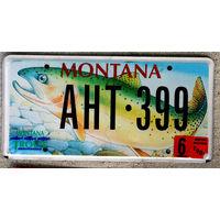 Номер автомобильный США  Montana trout