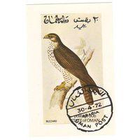 Оман. Птица. 1 блок