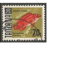 Танзания. Краснополосый групер. 1967г. Mi#27.