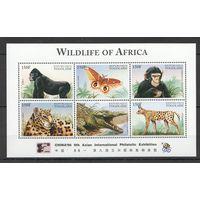 Того Фауна Африки Жвотные Обезьяна Бабочка Леопард Крокодил кб