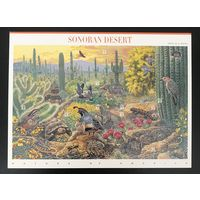 1999 Природа Америки - пустыня Сонора - самоклеющиеся