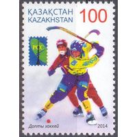 Казахстан 2014 космос РСС спорт хоккей с мячом клюшка