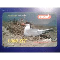Словения 2001 чайка