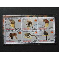 Восточный Тимор 2001 г. Фауна.