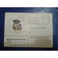 СССР 1982 Сыроежка прошло почту