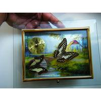 Часы на ходу с настоящими засушенными бабочками( одна вращается ).