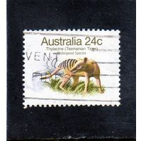 Австралия.Силацин (Тасманский тигр)