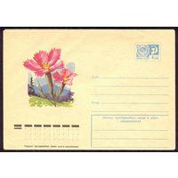 СССР 1974 флора гвоздика