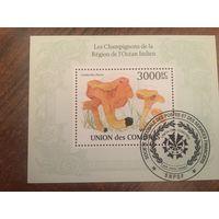 Коморские острова 2010. Грибы лисички (блок)