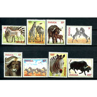 Руанда - 1984г. - Зебры и буйволы - полная серия, MNH [Mi 1283-1290] - 8 марок