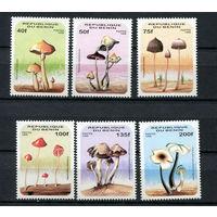 Бенин - 1996 - Грибы - [Mi. 849-854] - полная серия - 6 марок. MNH.