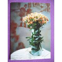 Щукин А.(фото), Поздравительная открытка, 1996, чистая (белорусская).