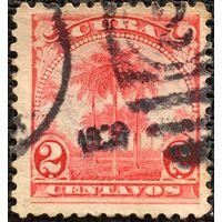 ЦІКАВІЦЬ АБМЕН! 1899, King Palm (2)