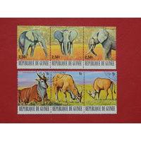 Гвинея 1977г. Фауна.
