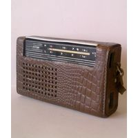 Радиоприемник Selga Селга в кожаном чехле 1