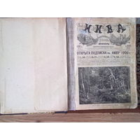 НИВА /Иллюстрированный журнал литературы и современной жизни/. Годовой комплект с 1 по 51 номер за 1900 год.