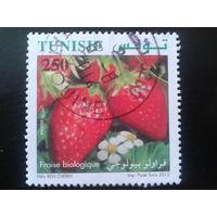 Тунис 2012 клубника