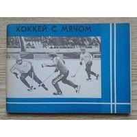 Хоккей с мячом 1981-1982 гг. Справочник-календарь