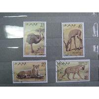 Марки - фауна, Сахара, дикие кошки, гепард, гиена, страус, антилопа