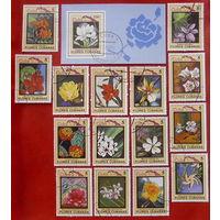 Куба. Цветы. ( Блок и 15 марок ) 1983 года.