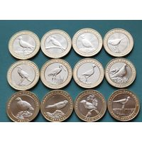 Турция 2019 (2020) 1 куруш Красная книга, Птицы БИМЕТАЛЛ, набор 12 монет UNC