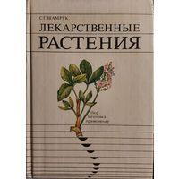 Лекарственные растения: сбор, заготовка, применение.