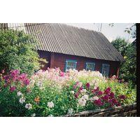 Деревянный дом в Городке Городокский район Витебскаяобласть
