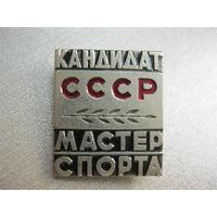 Кандидат СССР мастер спорта. Тяжёлый метал.