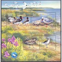 Украина фауна море птицы