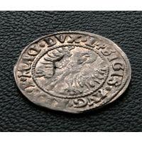 Полугрош 1546, Жигимонт Август, Вильно. Первый тип Погони полугроша 1546, окончания легенд: Ав - DVX.L+, Рв - DVCAT9.LIT. Редкий!