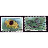 2 марки 1986 год Багамы 618-619
