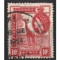 1954 - Кения - Уганда - Танганьика - Жираф 10 Mi.93