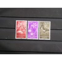 Испанская Гвинея 1958 Бабочки  (4)