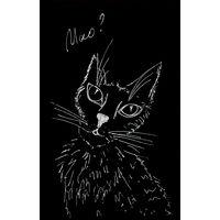 """Фотокартина """"Кот. Черно-белый"""""""