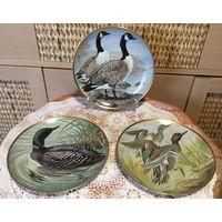 Тарелка коллекционная Водоплавающие Птицы 23 cm Редкая серия!  FP для Limoges