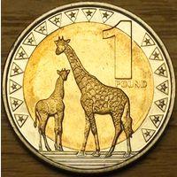 1 фунт 2015г. Нубийский жираф.